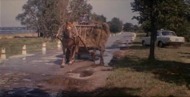 Автомобиль, скрипка и собака клякса [1974, музыкальная комедия, детский]