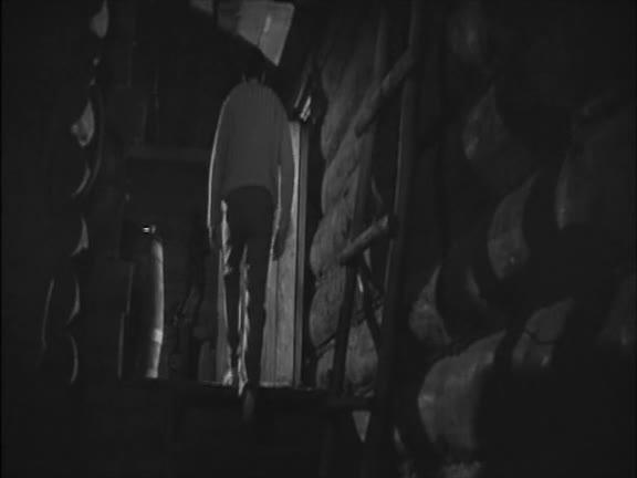 Лунные ночи [1966, криминальная мелодрама]