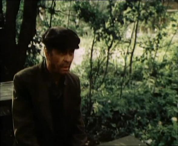 Садовник [1987, драма]