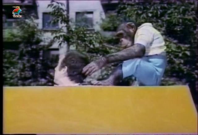 Новые приключения Дони и Микки [1973, детская комедия]