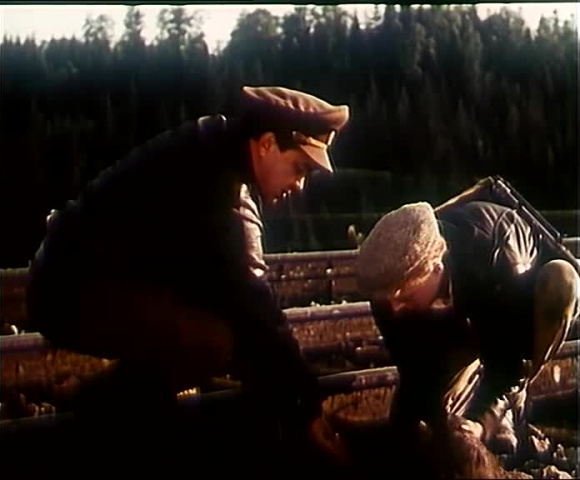 Без вести пропавший [1956, военный]