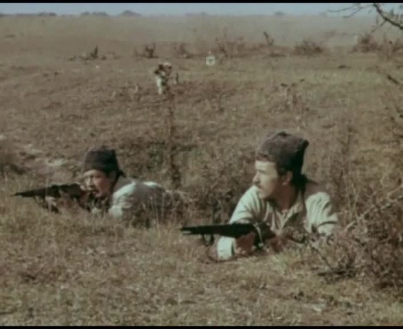 Буйный Терек [1981, драма]