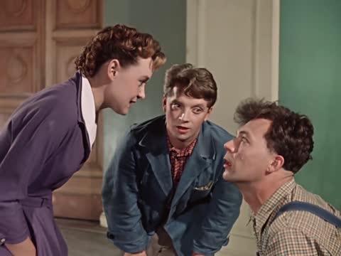 Карнавальная ночь [1956, комедия]