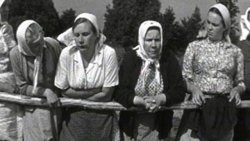 Бабье царство [1967, драма]